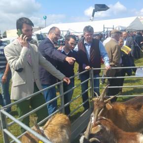 Pablo Yáñez desde Lumbrales: una administración que no ayuda a los ganaderos no es útil ni eficaz