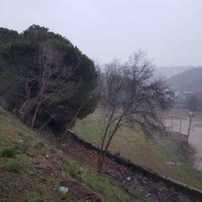 Cs Béjar exige al Ayuntamiento que mejore y proteja de forma inmediata toda la zona del recinto ferial de La Thesa