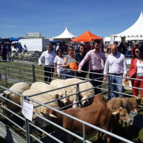 """D. Castaño: """"Cs está preparado para tomar el control y modernizar la agricultura, ganadería e industria agroalimentaria de CyL"""""""